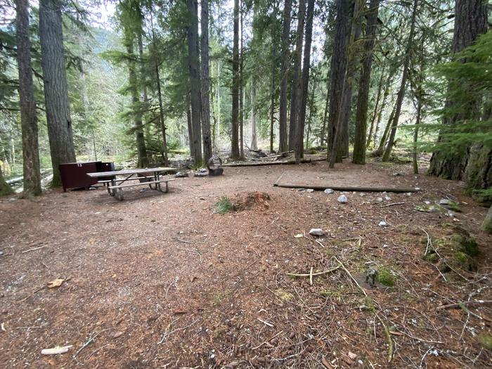 Tent pad, picnic table, campfire ring, and bear box in the woods.View of campsite.
