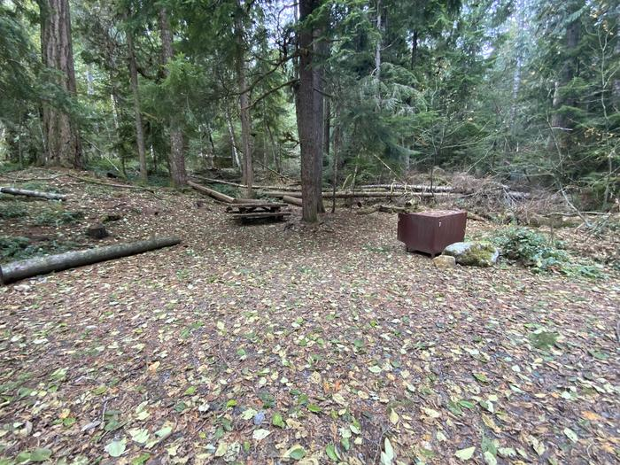Picnic table, campfire ring, and bear box in the woods next to a parking space.View of campsite.