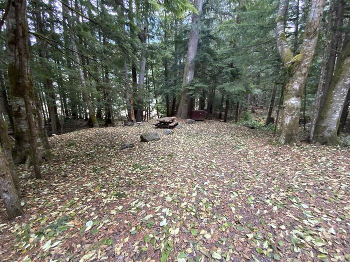 Picnic table, bear box, and campfire ring  near a parking space. View of campsite.