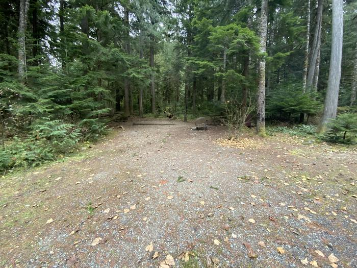 Tent pad, campfire ring, picnic table, and bear box near a parking spot.View of campsite.