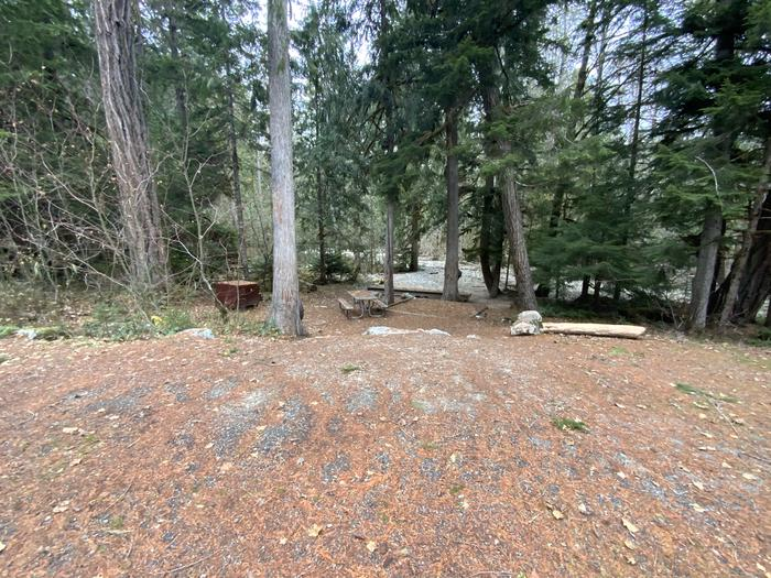 Bear box, picnic table, and campfire ring near a creek, down below the parking spot.View of campsite.