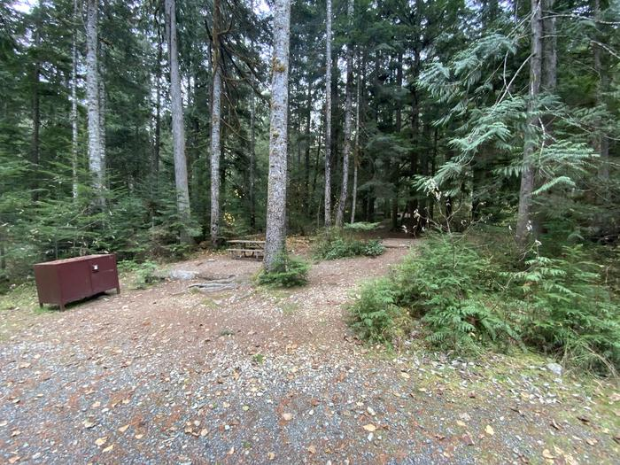 Bear box, picnic table, campfire ring near a parking spot in a forest.View of campsite.