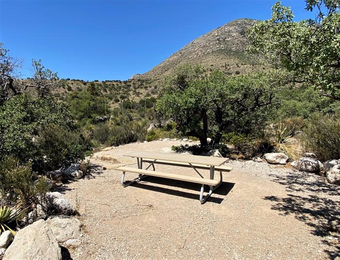 Tent campsite 18, surrounded by small desert trees and vegetation.  View from SE corner with picnic table in foreground and tent pad just behind table.