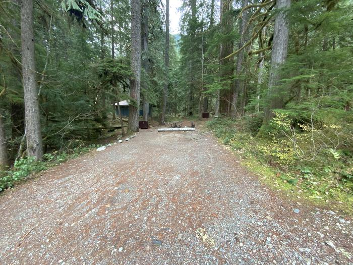 Gravel parking area with a forested campsite containing a picnic table, campfire ring, and bear box.View of campsite.