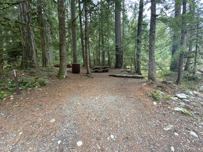 Gravel parking spot with a campsite containing a picnic table, campfire ring, and bear box in the forest.View of campsite.