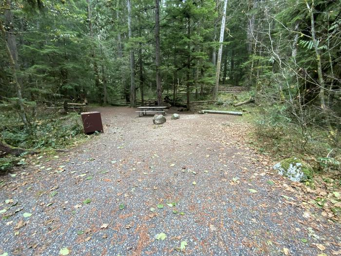Gravel parking area with an adjacent campsite in the woods containing a bear box, campfire ring, and picnic table.View of campsite.