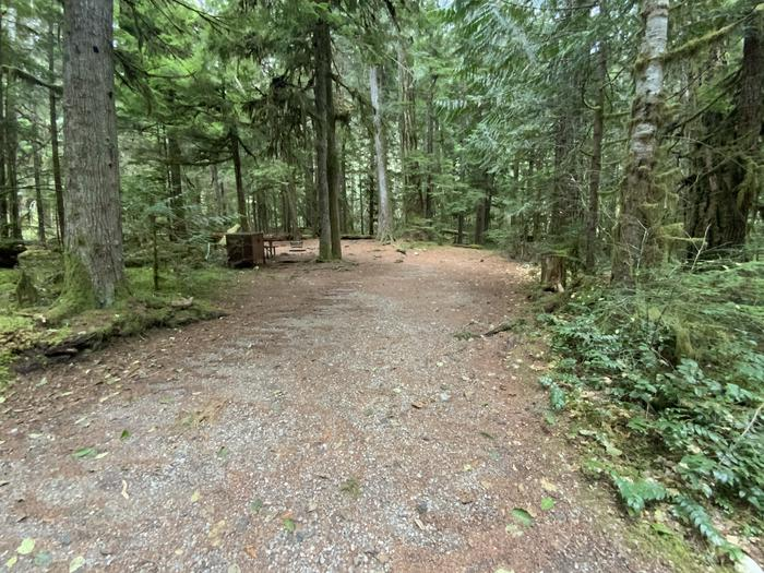 Gravel parking area adjacent to a wooded campsite containing a bear box, picnic table, and campfire ring.View of campsite.