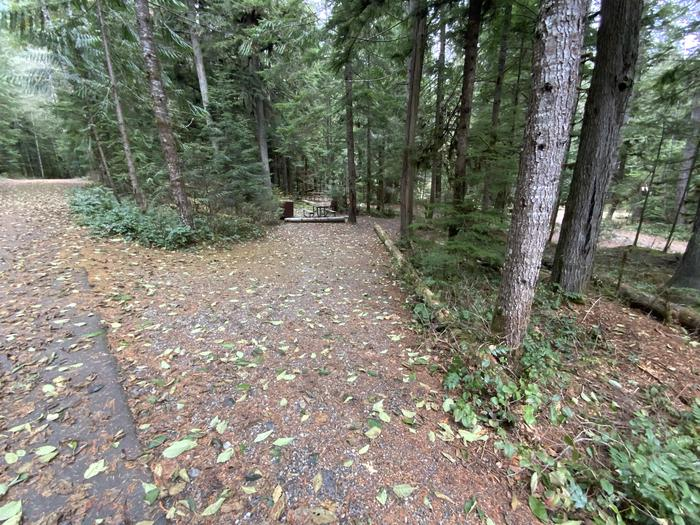 Gravel parking area adjacent to a campsite containing a picnic table, campfire ring, and bear box.View of campsite.