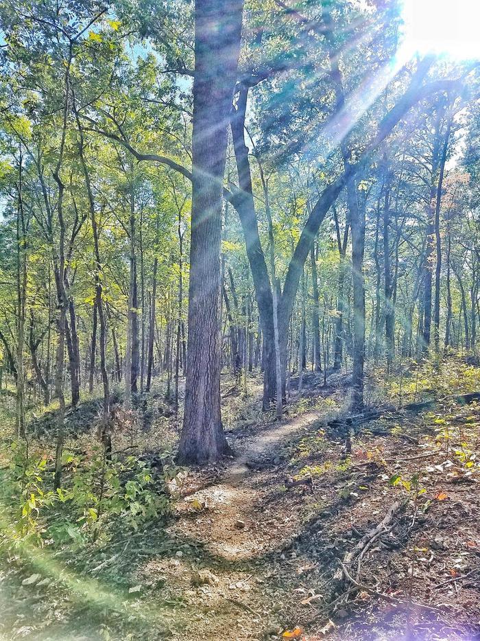 North Shore TrailAccess the North Shore Trails via the trailhead located in Overlook Park