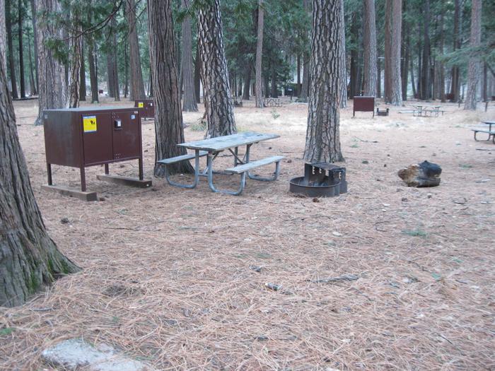 CampsiteCampsite 131