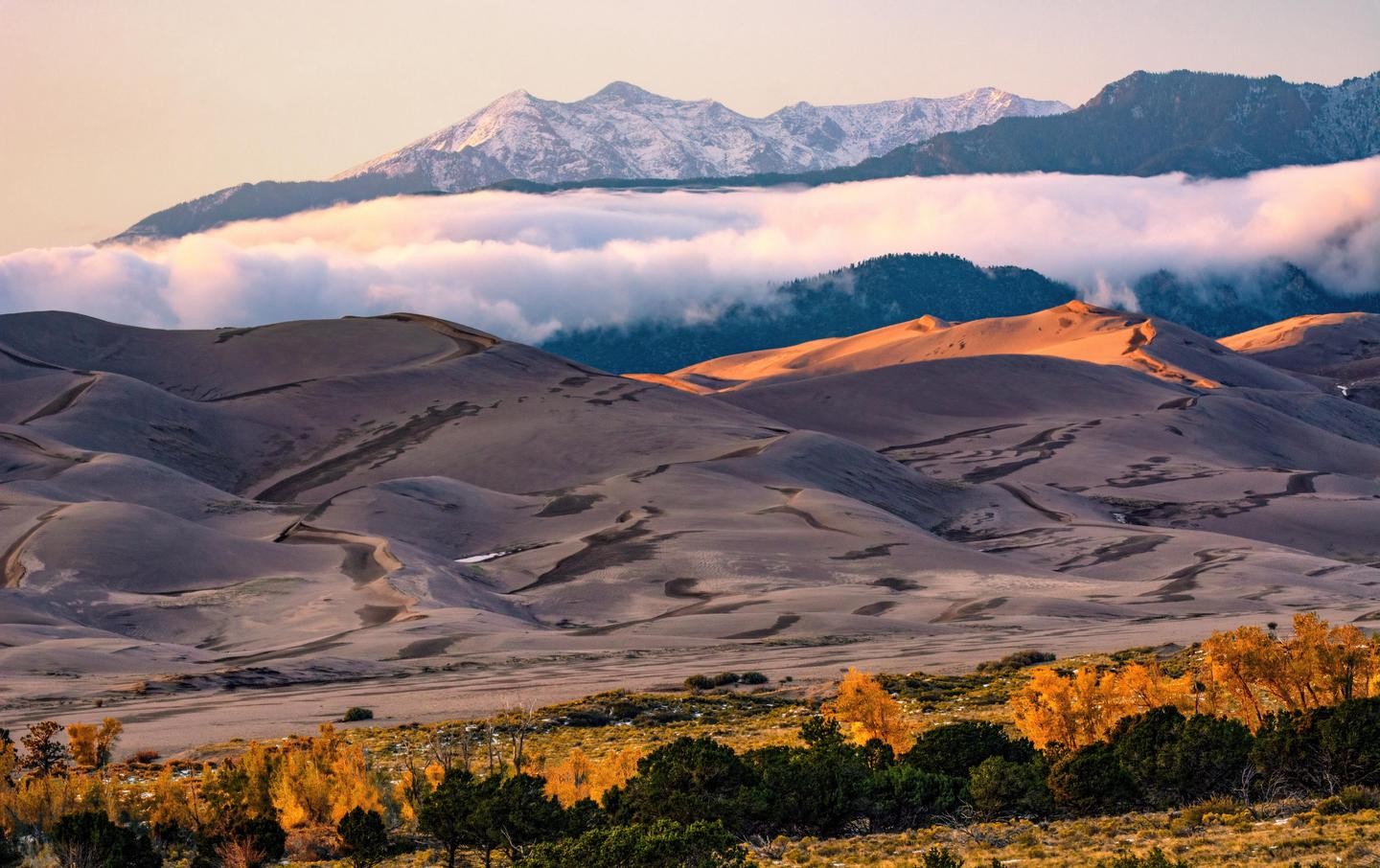 Gold Cottonwoods, Dunes, and Cleveland PeakExperiencing Great Sand Dunes in the quieter seasons of fall and winter can be a rewarding experience.