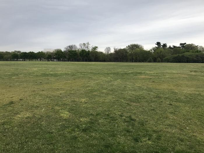 A view of the West Potomac Park Mixed Use Fields. The image shows a grassy field with trees and the Lincoln Memorial in the distance.West Potomac Park Mixed Use Fields