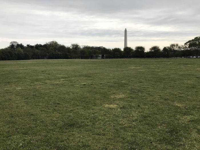 A view of the West Potomac Park Mixed Use Fields. The image shows a grassy field with trees and the Washington Monument in the distance.West Potomac Park Mixed Use Fields