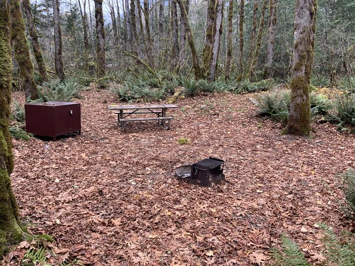 Campsite containing a bear box, picnic table, and campfire ring.View of campsite.