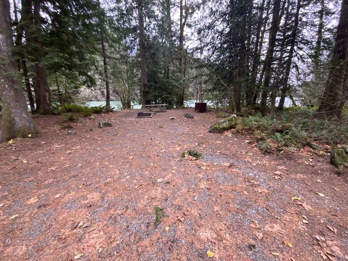 Moderately shaded campsite containing a campfire ring, picnic table, and bear box. The Skagit River can be seen through the trees.View of campsite.