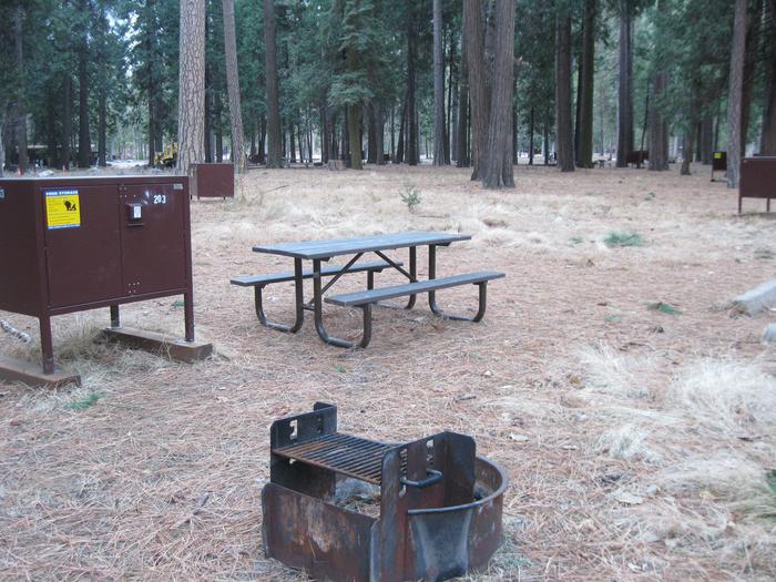 CampsiteCampsite 203