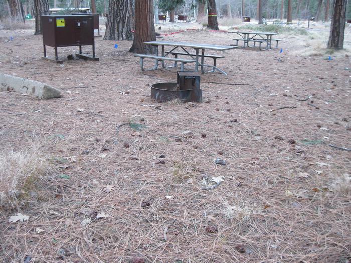 CampsiteCampsite 204