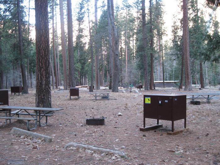 CampsiteCampsite 208