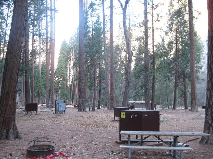 CampsiteCampsite 210