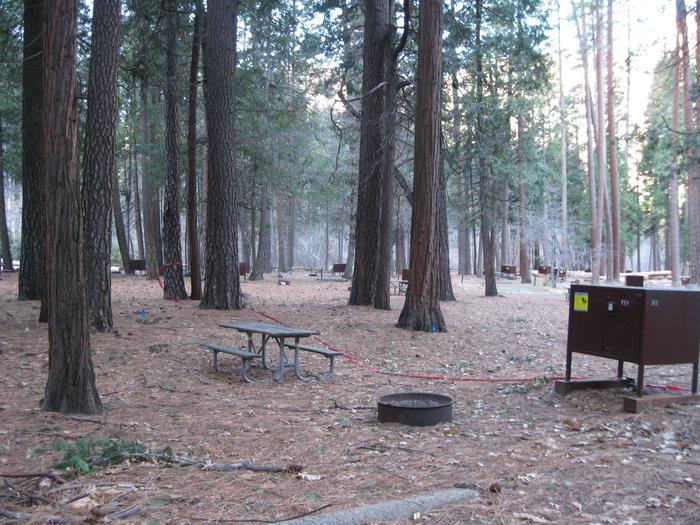 CampsiteCampsite 212