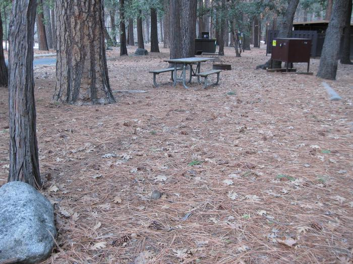CampsiteCampsite 218