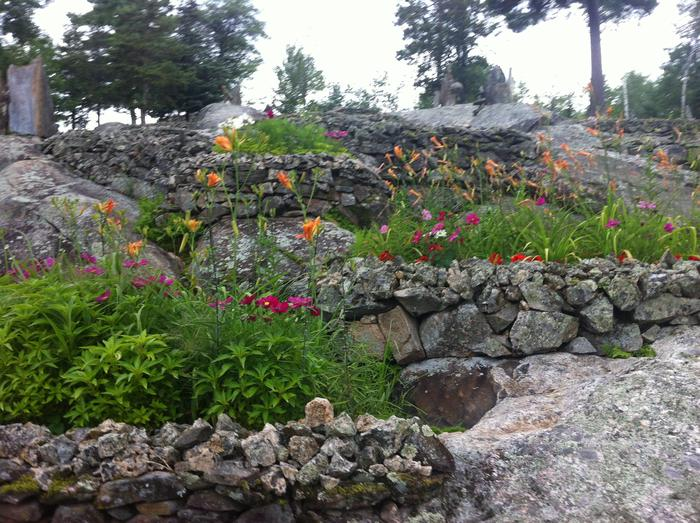 A view of several small restored flower beds with a variety of colorful annuals and perennials.