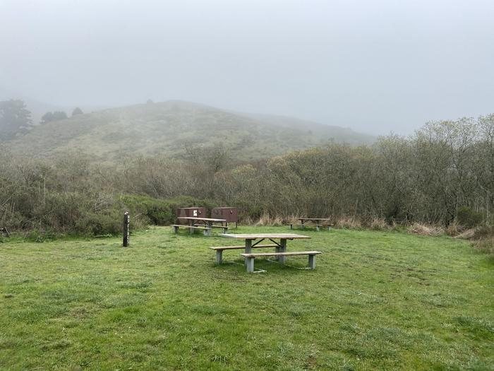 Green grass with two picnic tables and two food lockers.Group site at Haypress in February.