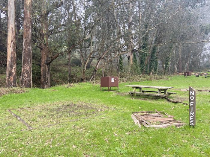 One food locker and picnic table. One tent pad.Site 2 in February