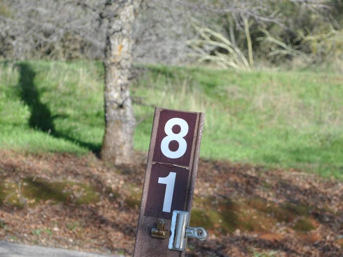 Acorn Campground Site 81Carsonite marker for site