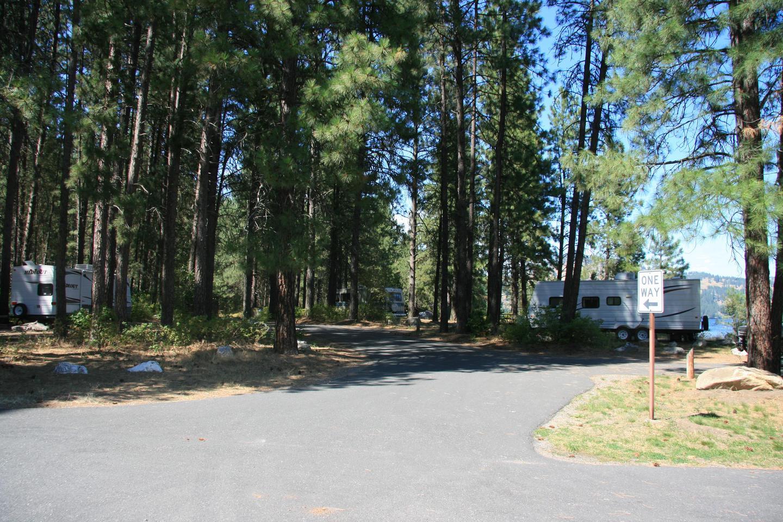 Snag Cove Campground 1