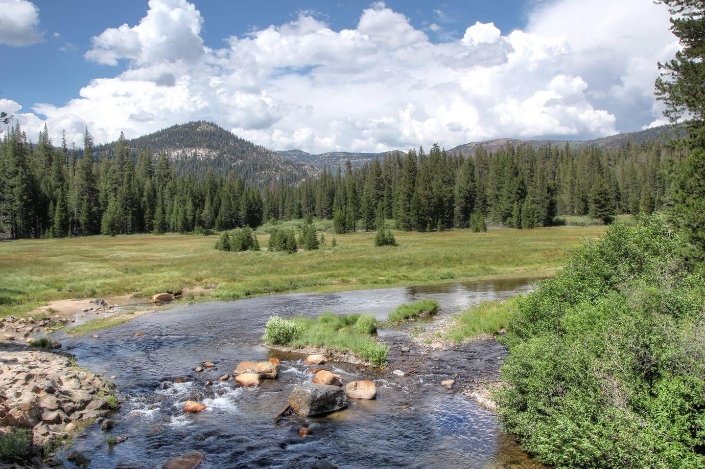 Soda Springs Meadow and San Joaquin River