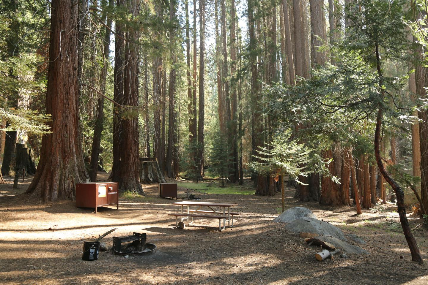 CampsitesAtwell Mill's campsites are in a shady sequoia grove.