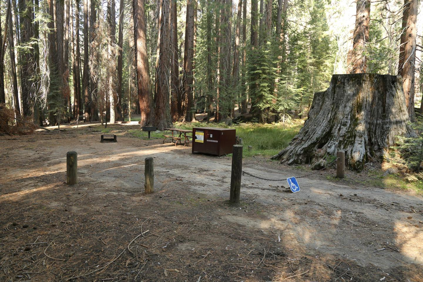 Accessible CampsiteThis accessible campsite features level, firm-packed surfaces.