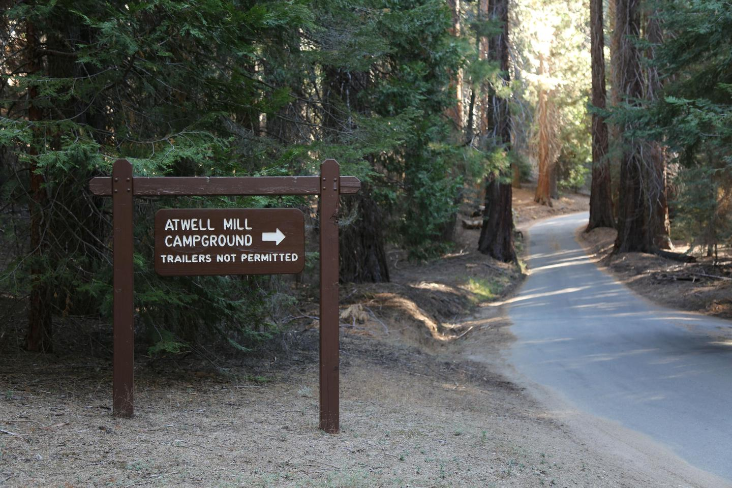 Campground EntranceThe roads leading to the campground are extremely narrow and winding.