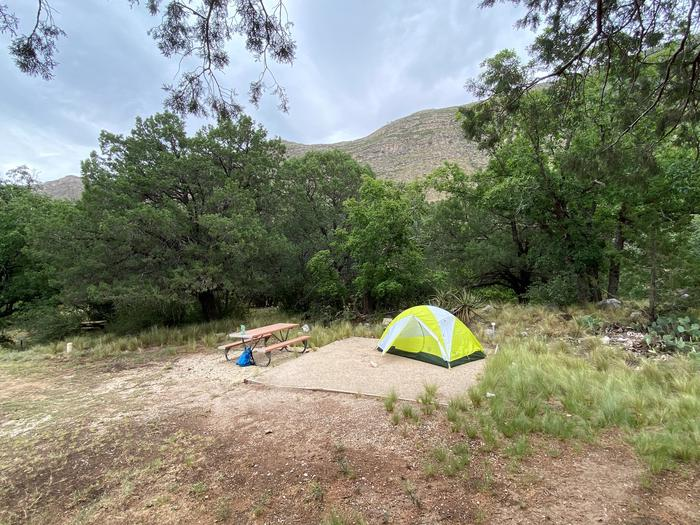 Tent campsite number 1 is near a line of trees but sits mostly in the sun.  The photo show a picnic table and tent pad with a 2-person tent.Tent campsite number 1.