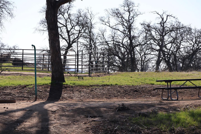 Wildcat Campsite 18 (Horse Corral)