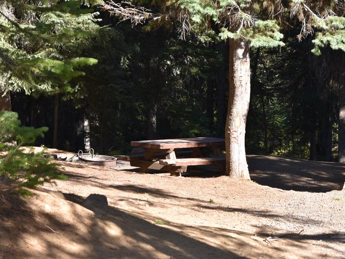 Campsite #4 with picnic table, shade and treesJubilee Lake Campground site #4