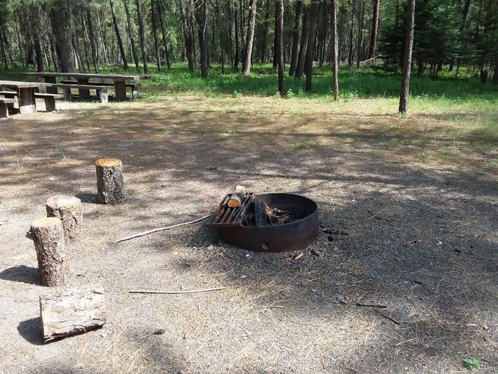 Yaak River Day Use area- Fire Ring