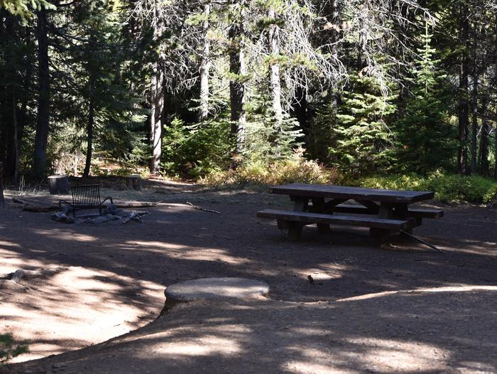 Campground with picnic table, fire ring and treesJubilee Lake campground site#5