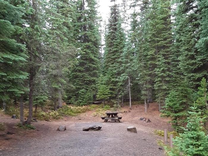 campground with picnic table, fire ring and treesJubilee Lake Campground site #7