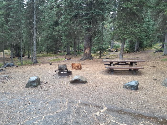 campsite with picnic table, fire ring and trees.Jubilee Lake Campground site #8