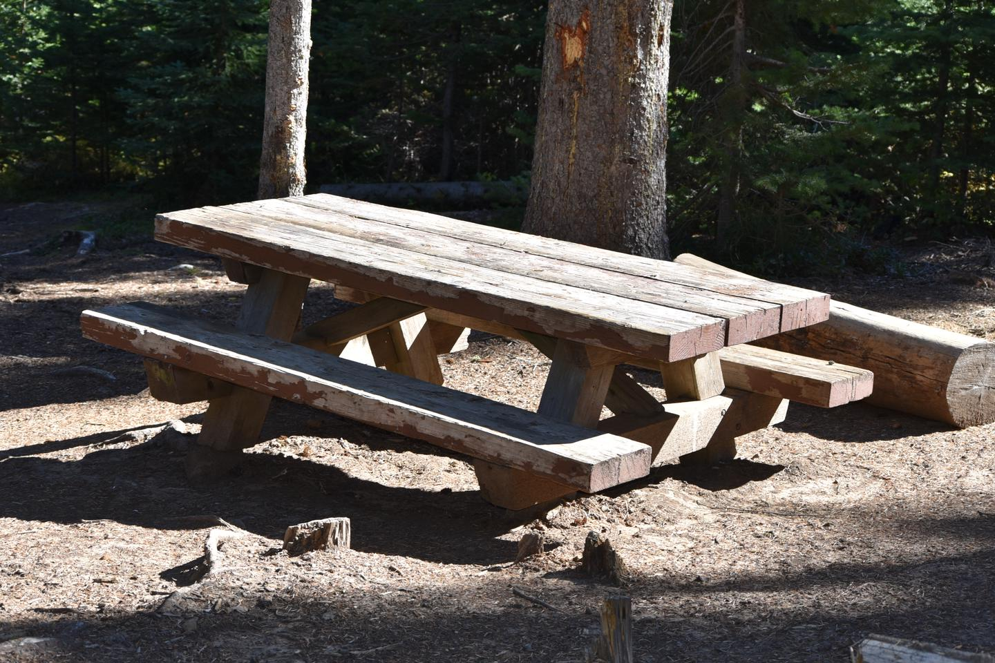 picnic table at campsiteJubilee Lake Campground site #19