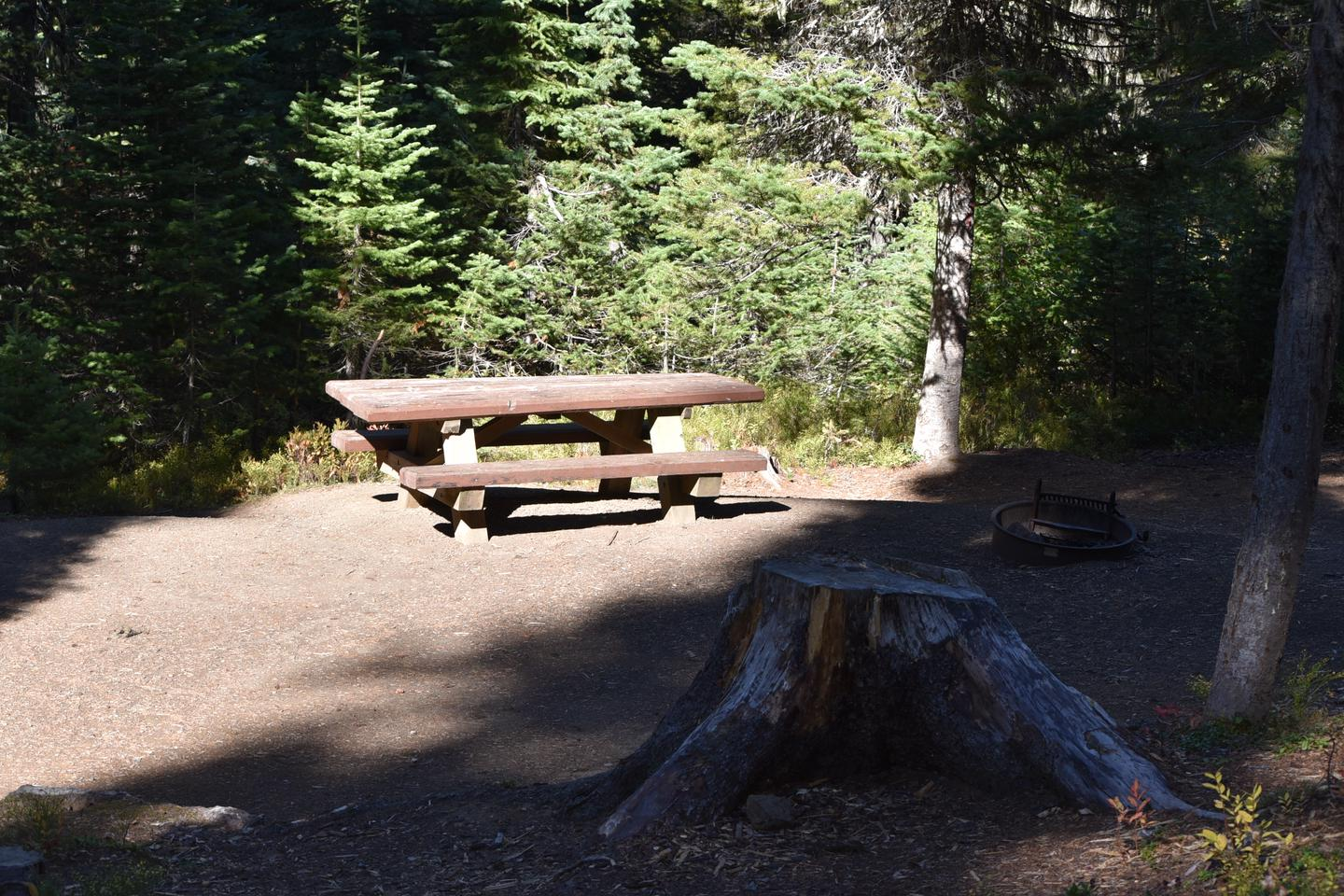 camp site with picnic table and stumpJubilee Lake Campground site #24