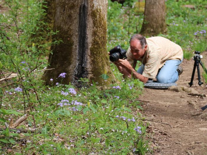 Whiteoak Sinks VisitorPhotographer photographing wildflowers