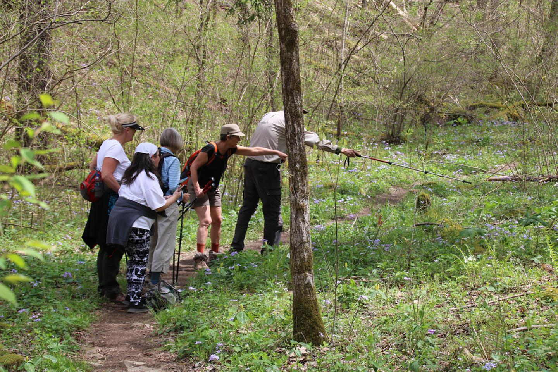 Whiteoak Sinks VisitorsHikers with Park volunteer