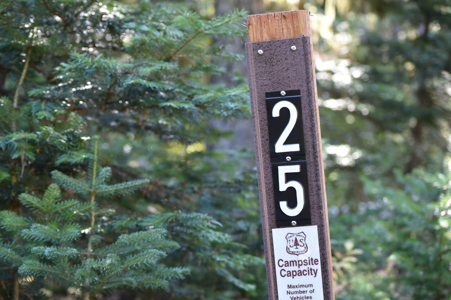 entrance sign for camp siteJubilee Lake Campground site #25