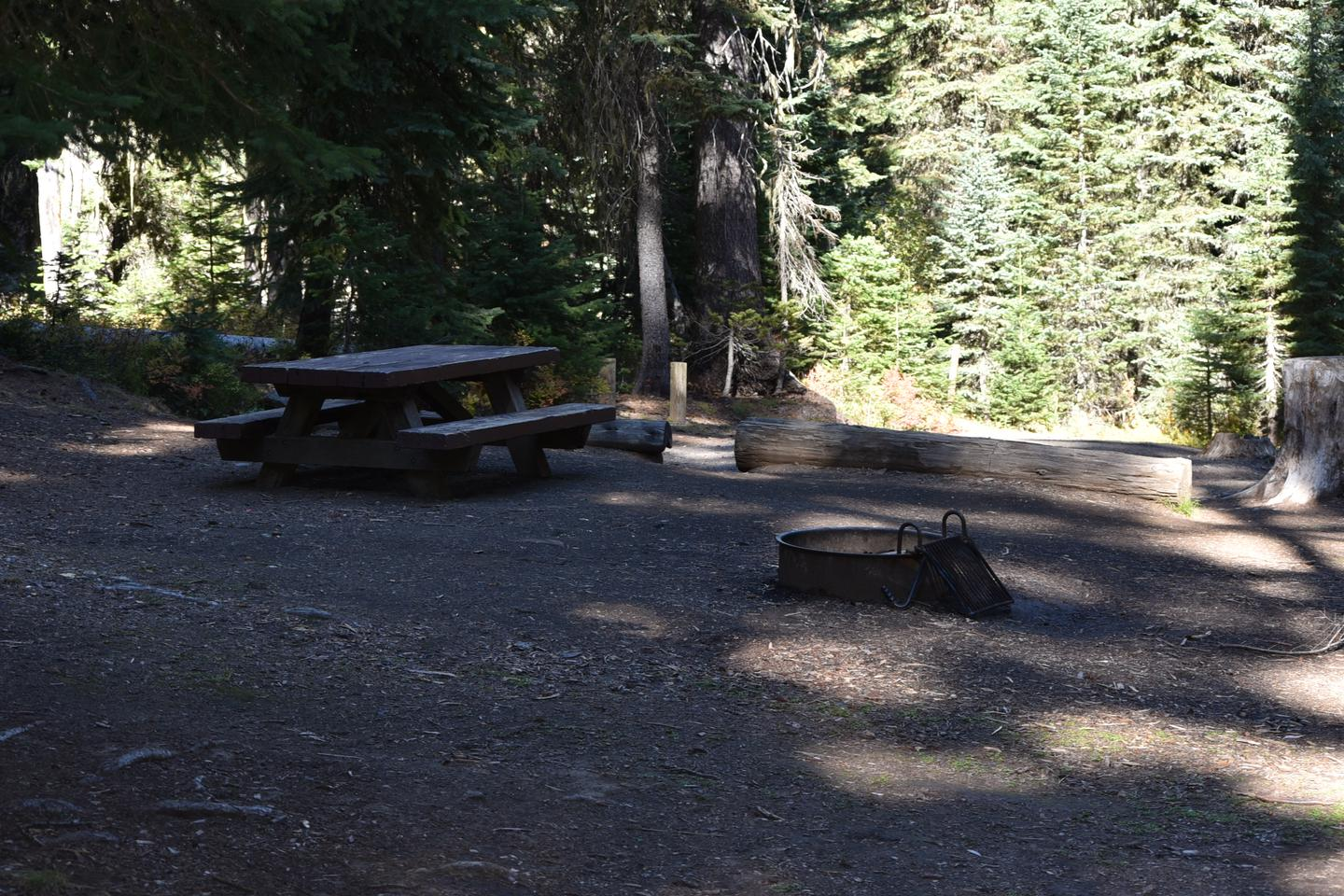 campsite with shade, picnic table and fire ringJubilee Lake Campground site #25