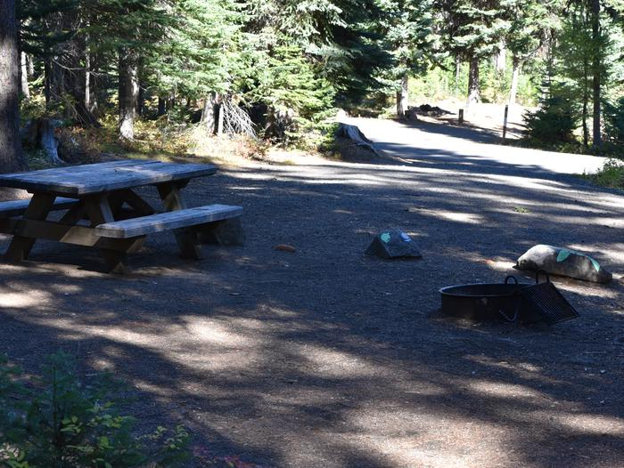 Camp site with picnic table, fire ring and shade.Jubilee Lake Campground site #30