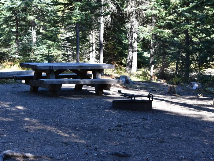 camp site with picnic table, fire ring and shade.Jubilee Lake Campground site #32