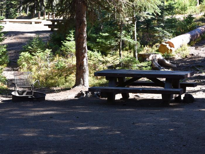 camp site with picnic table and fire ringJubilee Lake Campground site #33